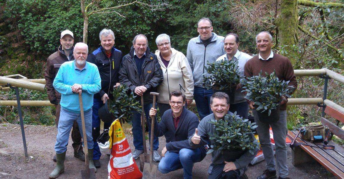 Mitglieder der CDU-Fraktion pflanzen Rhododendren an den Geroldsauer Wasserfällen (Beitrag mit Fotogalerie)
