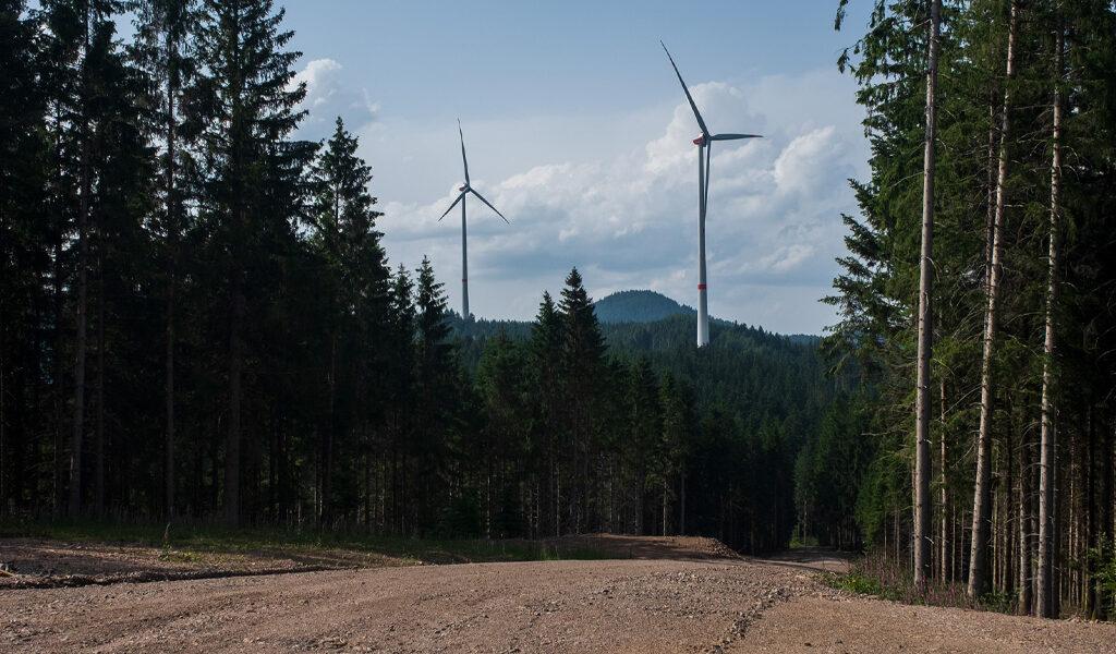 Windenergienutzung in Baden-Baden: Gemeinsame Stellungnahme